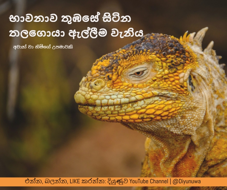 AchanCha.facebook-photo