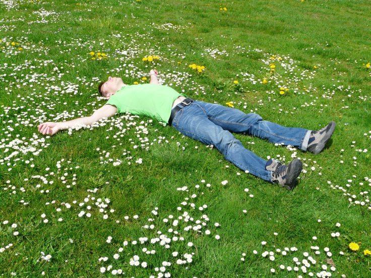 Pixabay high-angle-view-of-lying-down-on-grass-258330