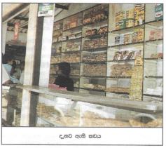 Monis Shop 1998