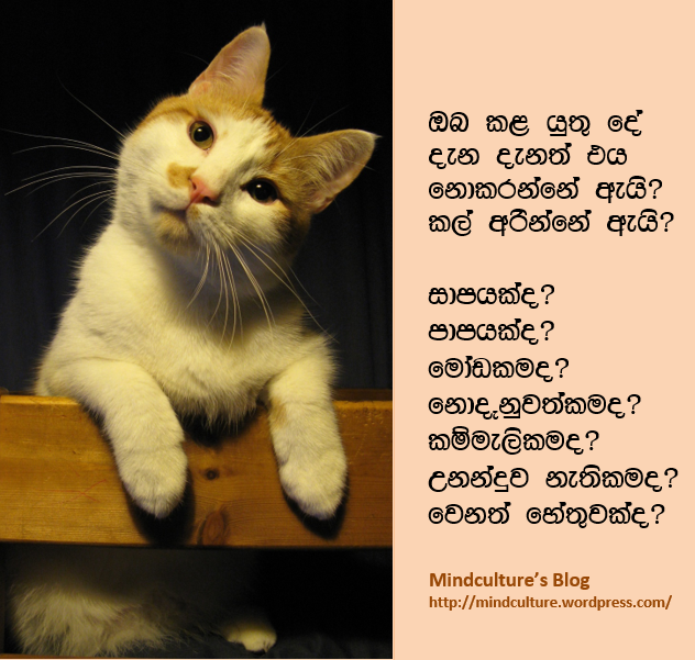 Why dont you sinhala Diyunuwa Blog